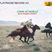 PLAY/PAUSE RECORD #021 - RAÏ & GASBA CHAOUI - CORNE DE GAZELLE - Live from ANNABA