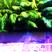 AL ZENN x KINGDOM KRAZE - Living Water [mix 1]