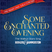 SOME ENCHANTED EVENING 2015 - MUSICAL MAGIC