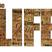 The Life 12 - The Sermon