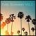 Trap Summer Vol.1