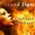 Sound Signs - Flashback outburst
