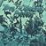 Vic Flairs - Pen Thiefing Series Vol.15