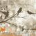 JAY BIRD PRESENTS SUMMER SESSIONS 2015