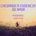 1 João 4:7-16 - Pr. Edison Naves - 06/09/2015