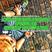 LORD CHRIS BERG RADIO #08 (EDM, HIP HOP, RNB, TRAP) 7-10-17