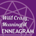 WCME 066: The Enneagram and NLP, with Tom Condon - Wild Crazy Meaningful Enneagram
