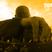 Podcast: Tony Nova Power Hour Show #919   Get up and Move