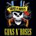 Guns & Roses Grandes Exitos