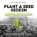 Plant A Seed Riddim (daily ites production 2017) Mixed By SELEKTA MELLOJAH FANATIC OF RIDDIM
