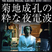 Tatsuro Yamashita / Sparkle(菊地成孔の粋な夜電波edition)