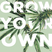 Grow Your Own Launch Party, Sept. 27th, 2017, pt.1