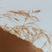 Soyka – Birdie MIX 002