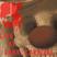 Live at Dark Karnival /// 10-26-13
