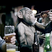 The Bearded Monkey