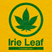 Irie Leaf's profile picture