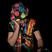 DJvoorelkfeest.be (DJ Levi)'s profile picture
