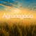 Agronegócio - A Voz do Campo n