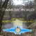 TimMusicWorld from Tim Hunter