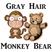 Gray Hair Monkey Bear