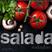 saladacast