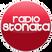 STONATA LIVE 23-02-15