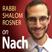Rabbi Rosner on Nach – OU Tora