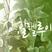 싱할렐루야169회.mp3