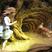 Deeper Down The Rabbit Hole Episode 178: Eric Vernor (Corvis Nocturnum) Discusses Lilith