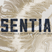 Essentials - God The Trinity