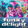 funky delight vol.2 (45s special) image