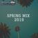 SPRING MIX 2019 image
