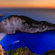 Best - Greek dj leven kalokairi 9-6 image