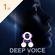 Deep Voice image