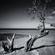 Copecky - Wiosna BEACH ! image