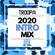 2020 INTRO MIX DJ TROOPA image