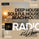 Beachhouse Radio - October 2020 (Episode Eleven) - with Royce Cocciardi image