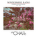 Windermere Radio: Michael Chang Live - House Wisdom Vol. 174 image