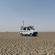 La Freak #81 : Bubblegum Desert Truck image