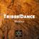 Estatic Dance Warm Down Deep Chill Mix - Tribe & Dance August 2019 image