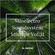 Minelectro Soundsystem Mixtape Vol.31 FT. FatCat image