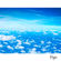 Flight image