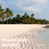 Progressive Sessions Vol 12 image