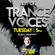 Pulsedriver - Best Of Trance Voices Vol.1 (Mix Session) image