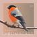 Chromacast 50 - Placebo eFx image