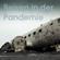 Reisen in der Pandemie. Wo bleibt das Geld? (Teil 1) - 23.04.2021 - Florian Furrer image