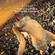 GA 027 ROBOT HEART 2016 (Burning Man Experience) image