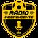 São José 2-0 Tubarão   Rádio Web Independente   Série D 2018 image