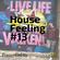 House Feeling #13 image