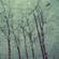 Dustin Morris - Rain image